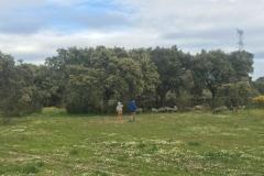 00006PEPE ALBA -Pangea con turismodeljamon.com 4:9:2016