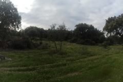 00007PEPE ALBA -Pangea con turismodeljamon.com 4:9:2016