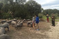 00014PEPE ALBA -Pangea con turismodeljamon.com 4:9:2016