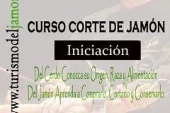 Cartel curso Aprohte MODIFICADO x