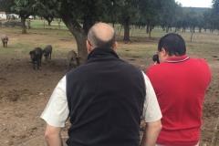 00004PEPE ALBA 17-10-2015 Periodista Mexicano - Trabajo para la Extremadura Turismo