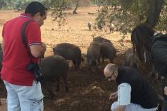 00006PEPE ALBA 17-10-2015 Periodista Mexicano - Trabajo para la Extremadura Turismo