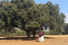 00007PEPE ALBA 17-10-2015 Periodista Mexicano - Trabajo para la Extremadura Turismo