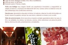 FICHAS_V_PRIMAVERA_V1-9_b