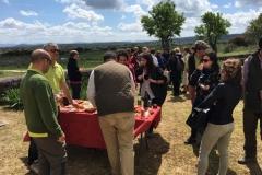 31-03-2017 turismo del jamón - Pepe Alba00018